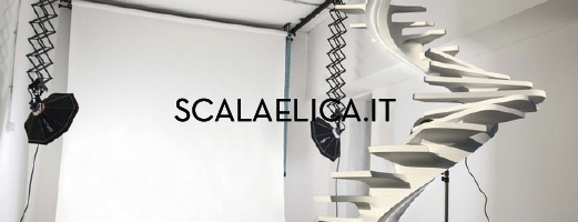 partnership - scala elica